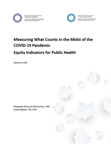 Measuring what counts in the midst of the COVID-19 pandemic: Equity indicators for public health