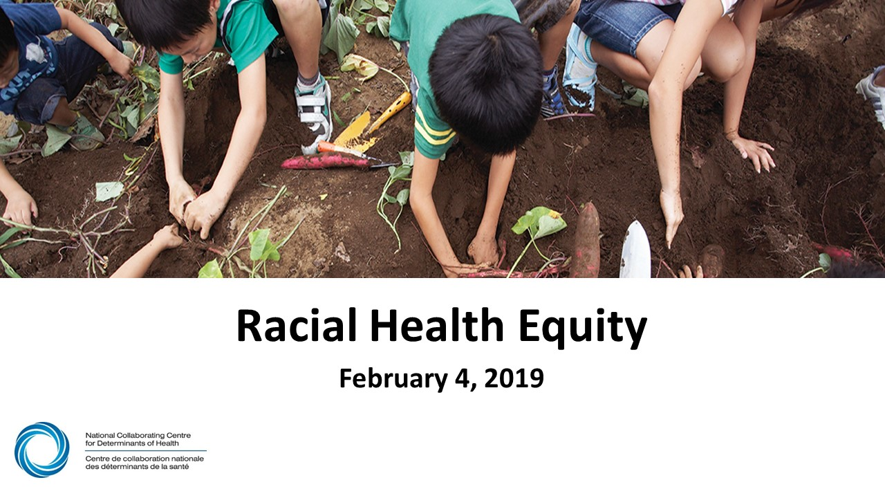 Racism, anti-racism and racial equity webinar series